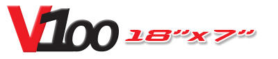 Logotipo V100 18×7