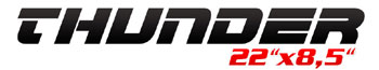 Logotipo Thunder 22×8,5